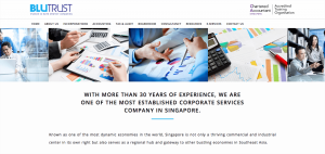 Thinking Notes Projects Showcase - BluTrust Corporate Services Website